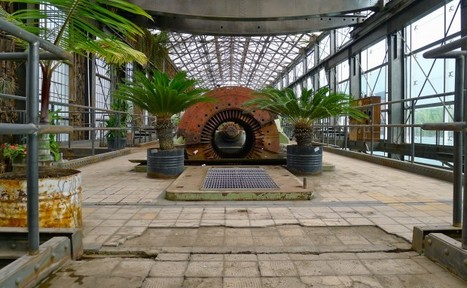 Abandoned Factory Library Greenhouse | Walking Paper | SocialLibrary | Scoop.it