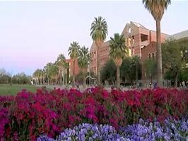 $9 million grant to help launch new UA veterinary school in Fall of 2015 | KOLD (TV-Channel 13, Tucson) | CALS in the News | Scoop.it