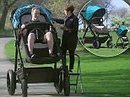 Contours makes an adult-sized stroller so parents can test them out before buying | Strange days indeed... | Scoop.it
