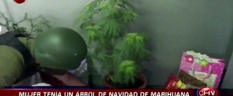 Video: Lente que hace invisible a objetos causa impacto en la web - Chilevision   Los Followers   Scoop.it