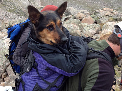 Hiker Hounded for Abandoning Hurt Dog on Mountain | Mind Candy  { interdimensionally } Cubed... It's SO yesterday to be a Square | Scoop.it