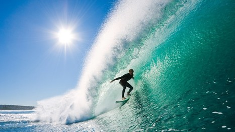 Your Next Wetsuit Will Mimic Otter Fur | Biomimicry 3.8 | Scoop.it
