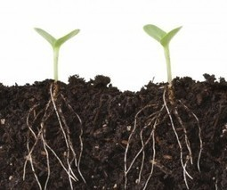Explained: The Difference Between Growth Hacking and Marketing   Mentions   Scoop.it