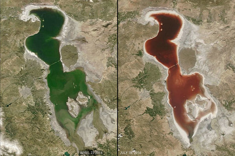Why a Giant Green Lake Turned Blood-Red | All about water, the oceans, environmental issues | Scoop.it