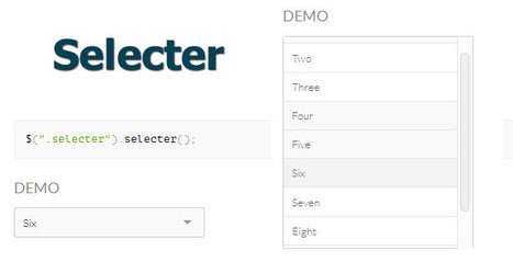 Selecter  /  jQuery plugin for replacing default select elements. | Formulaires HTML5, CSS3 & jQuery | Scoop.it