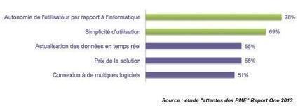 Solutions décisionnelles : les attentes des PME - informatique   Business Intelligence   Scoop.it