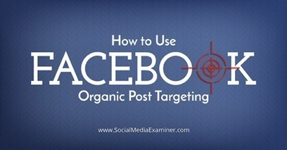 How to Use Facebook Organic Post Targeting | | SEO Tips, Advice, Help | Scoop.it