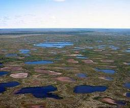 Subarctic lakes are drying up at a rate not seen in 200 years | Sustain Our Earth | Scoop.it