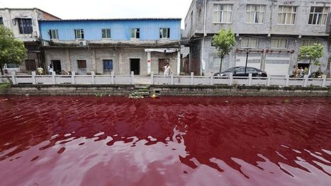 River Mysteriously Turns Red - ABC News | CLOVER ENTERPRISES ''THE ENTERTAINMENT OF CHOICE'' | Scoop.it