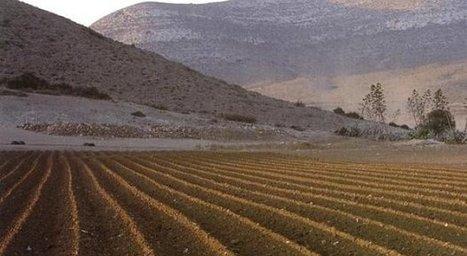 El 37% de la superficie de España está afectada por desertificación | Cambio climático | Scoop.it
