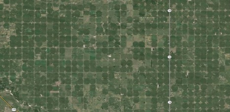Pivots and Loss of Habitat in Flyover-Country   Big Picture Agriculture   Ethnoecology   Scoop.it