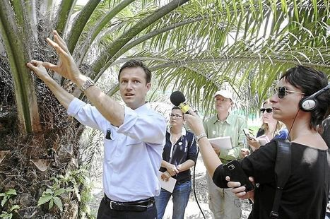 European journalists learn how oil palm plantations are run - The Star Online | Science | Scoop.it