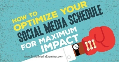 How to Optimize Your Social Media Schedule for Maximum Impact | B2B Marketing and PR | Scoop.it