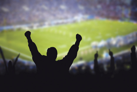 Safety in the Stadium | Risk Management | Sports Facility Management.4296211 | Scoop.it