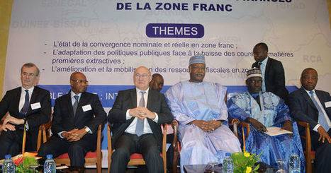 «Il faut sortir de l'omerta sur le franc CFA» | Géopolitique de l'Afrique | Scoop.it