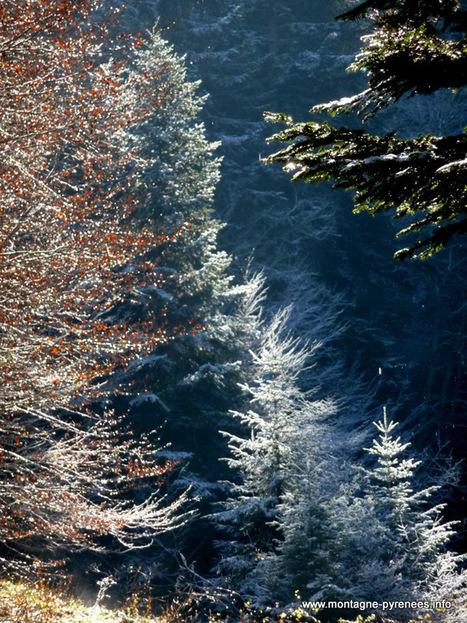 Echappées belles depuis les hauts de Grailhen | Vallée d'Aure - Pyrénées | Scoop.it