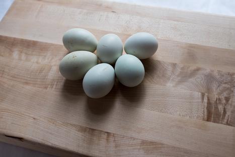 Snapshot Aesthetic - Fancy heirloom eggs. Digital // x100s (Winnie... | Fujifilm x100s | Scoop.it