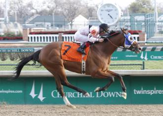 Oatsee, the dam of Shackleford, heading to England for mating with Frankel--DRF via @SusieBlackmon | Fran Jurga: Equestrian Sport News | Scoop.it