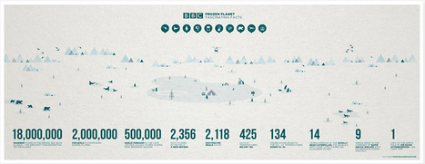 BBC Frozen Planet | Visual.ly | green infographics | Scoop.it