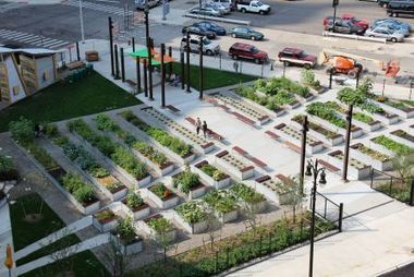 Agritecture in Detroit. More images here. | Garden Grunt | Scoop.it