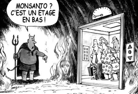Porte ouverte aux OGM | OGM et environnement | Scoop.it
