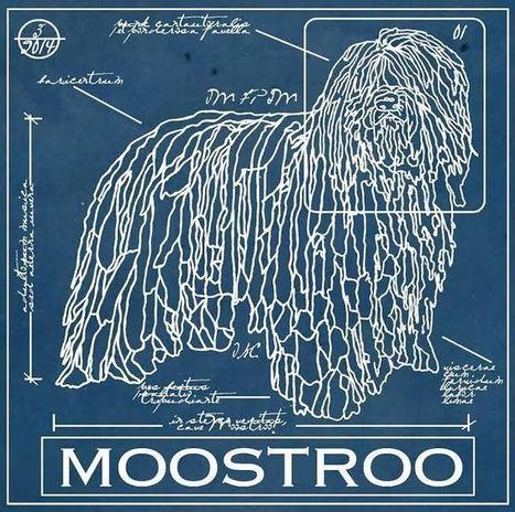 Moostroo - postpunk/songwriter | Il Rock Emergente Italiano | Scoop.it