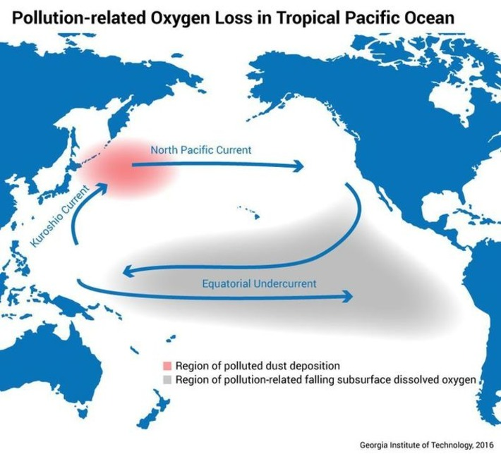 Polluted dust can impact ocean life thousands of miles away | Océan et climat, un équilibre nécessaire | Scoop.it