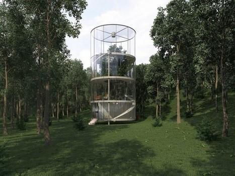 Un arbre au coeur d'une maison de verre | Construire sa maison avec un architecte | Scoop.it