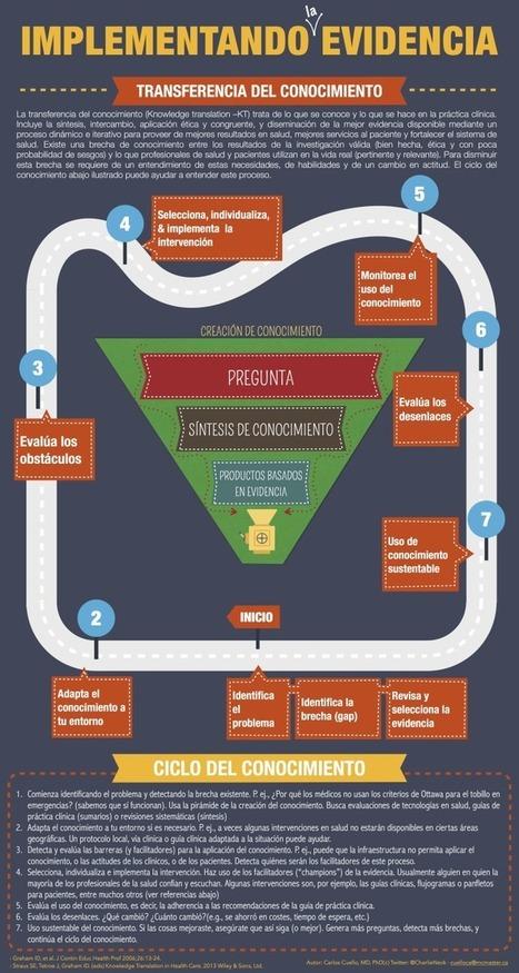 Cómo Sucede la Transferencia del Conocimiento | Infografía | Educacion, ecologia y TIC | Scoop.it