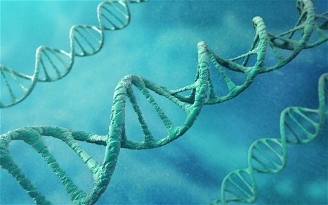 New DNA Data Storage could last Thousands of Years | Random stuffs | Scoop.it