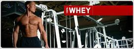 Musculation: Les Protéines | Musculation | Scoop.it