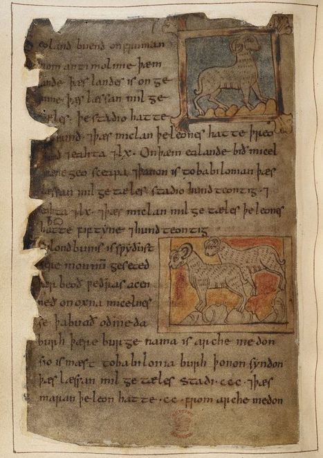 Monsters and Marvels in the Beowulf Manuscript - Medieval and Earlier Manuscripts | Anthropology, Archaeology, and History | Scoop.it