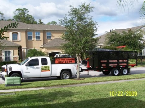 How to Care for your Tampa Lawn? | Landscaping | Scoop.it