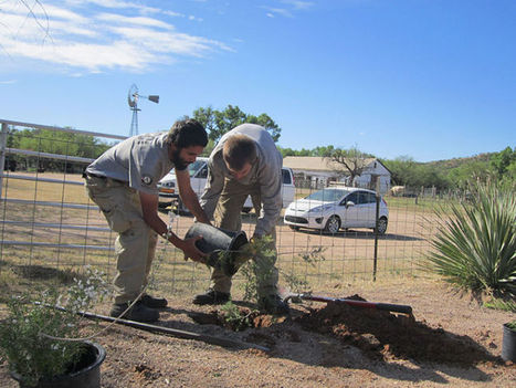 AmeriCorps volunteers leaving their mark in SCC | Nogales International | CALS in the News | Scoop.it