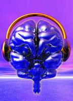 Musica e neuroscienze sul podio - Amadeus online | Neuroscienze | Scoop.it