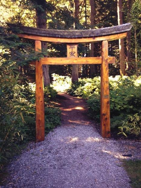 Twitter / pam_carr: The Japanese garden on Mayne ... | Japanese Gardens | Scoop.it
