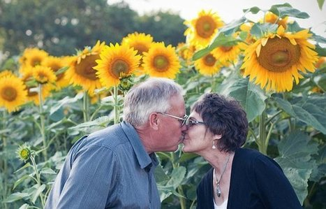 Wisconsin Man Plants 4-Mile Stretch of Sunflowers in Tribute to Late Wife | This Gives Me Hope | Scoop.it
