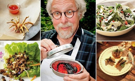 Insect-eating cook creates entire recipe book featuring bugs - Daily Mail | eating insects = win | Scoop.it