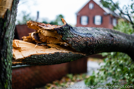 Aftermath of Hurricane Sandy in Brooklyn With My Fuji X-Pro1 And X100 | Patrick Leong | Fuji X-Life | Scoop.it
