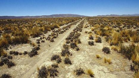 [Tahuantisuyo] Aménagement du territoire: L'ancienne route qui a créé un empire - BBC News | URBANmedias | Scoop.it