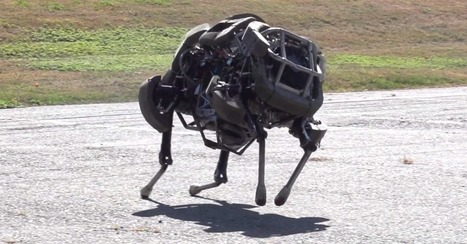 Wireless WildCat Robot Can Run a 4-Minute Mile | ajjsnoop | Scoop.it