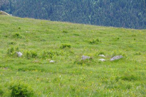 Un cromelch sous le Sarrat de Cousseillot | Megalithes en photo | Scoop.it
