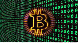 Geert Lovink and Patrice Riemens: The Bitcoin Experience (part I) | P2P Foundation | Peer2Politics | Scoop.it