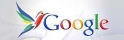 Google's Hummingbird: What B2B Marketers Need to Know | Digital Marketing Bites | Scoop.it