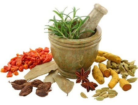 EPSILON EXPORTS - HERBAL PRODUCTS, FIBERS, GREEN TEA, MORINGO LEAF EXPORTS | herbs product | Scoop.it