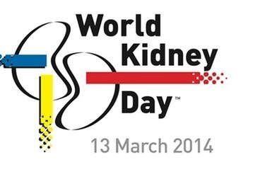 World Kidney Day being observed | World Kidney Day - Celebrations | Scoop.it