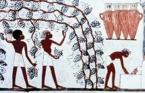 Historia del vino (III) - CocinaTipo | asado | Scoop.it