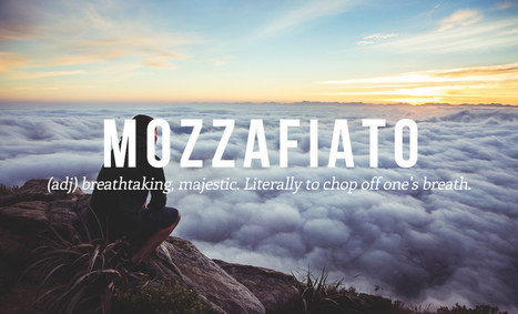 16 Luscious Italian Words And Phrases You Need In Your Life   Marketing 3.0 blue economy   Scoop.it