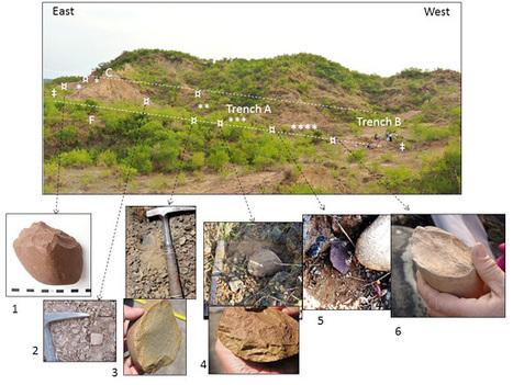 Des hominidés en Inde il y a 2,6 million d'années - Hominidés | Aux origines | Scoop.it