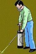 شركة رش مبيد بالرياض - الراقي لكل راقي | شركة تنظيف مجالس بالرياض | Scoop.it